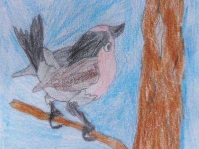 vogelwanderung3_640.jpg