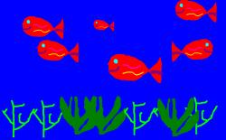 Bild: aquarium_julia.png