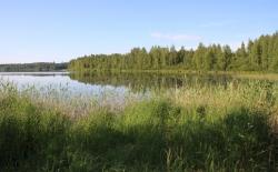 Bild: nordkap0181.jpg