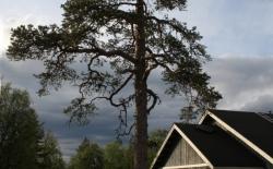 Bild: nordkap0235.jpg
