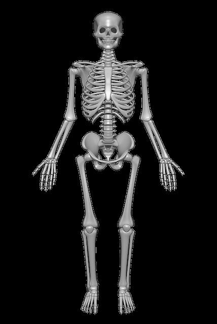 Unser Körper