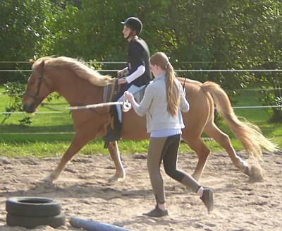 Pferd Reiten Lernen Können Reiten Lernen